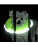New Glow Pups Puppy Bumpers